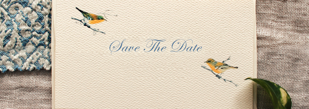 viva-institute-calendar-save-the-date